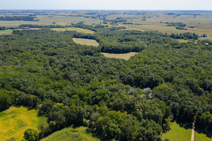 31570 willow rd - drone (15 of 31)