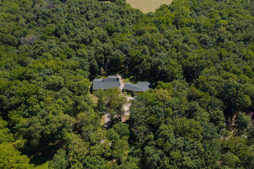 31570 willow rd - drone (19 of 31)