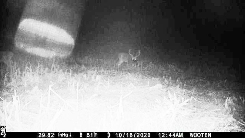 Trail cam1