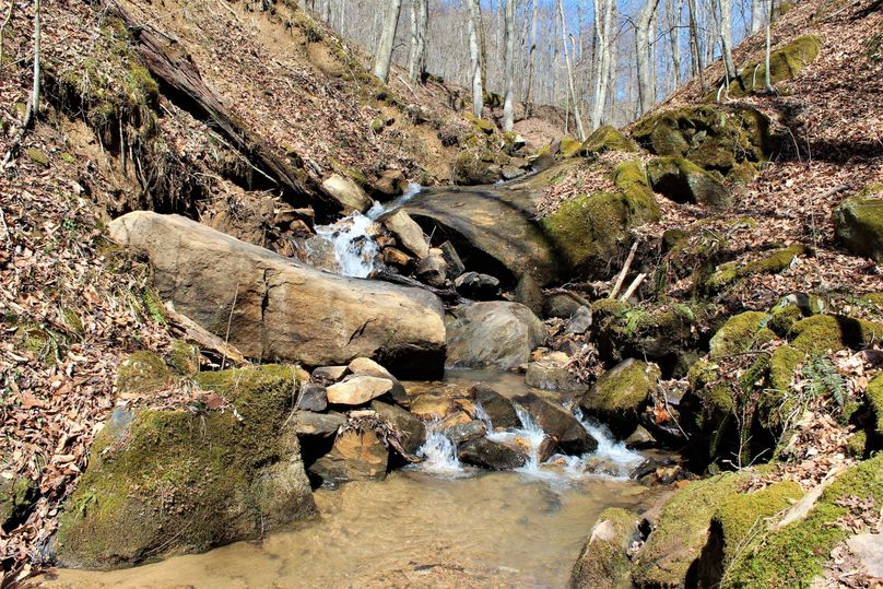 001 beautiful mountain stream flowing through the middle of the property