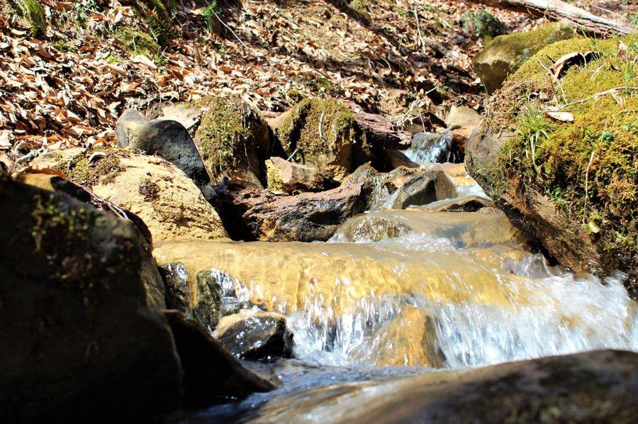 011 gorgeous clear mountain stream stream