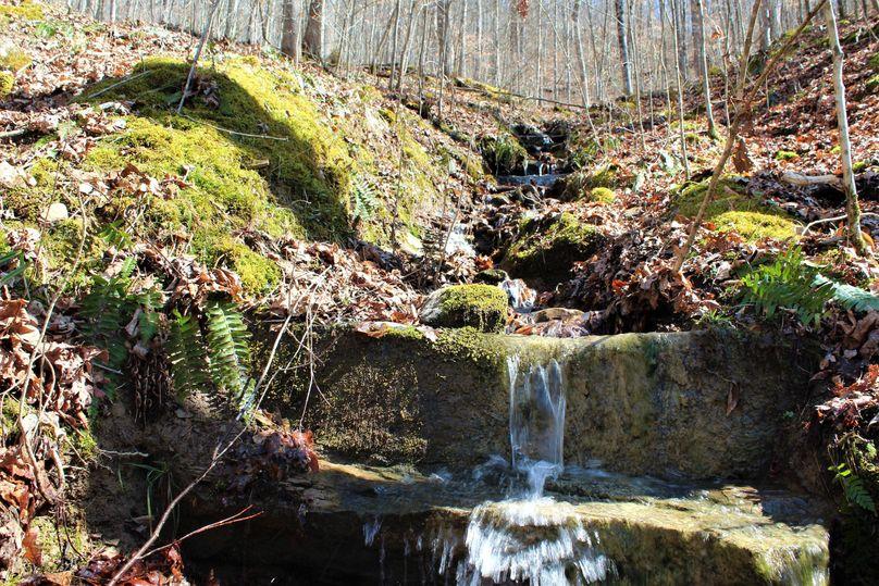 017 small seasonal feeder stream on a west facing slope