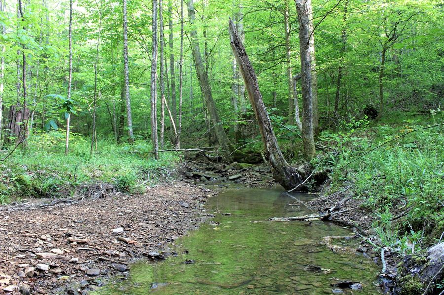 043 the main stream leading along the south boundary