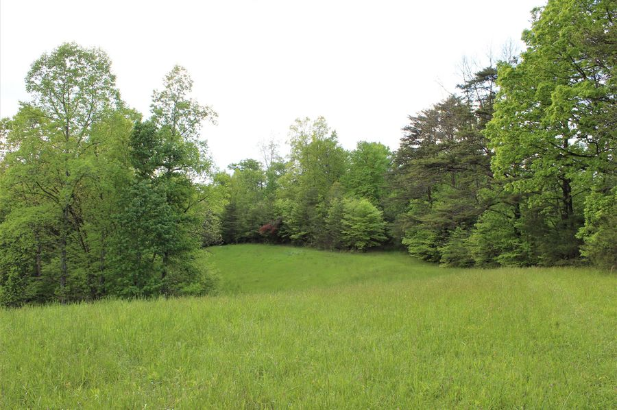 045 open field area in south middle of the property