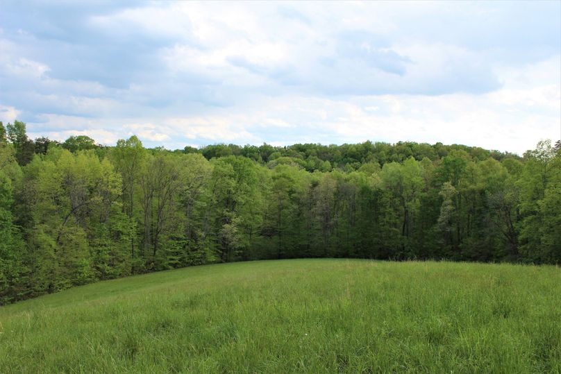 007 the large main back field in the center of the property