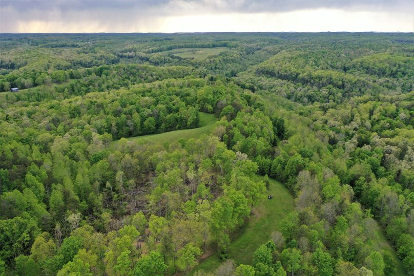 004 aerial drone shot from the center of the property looking west