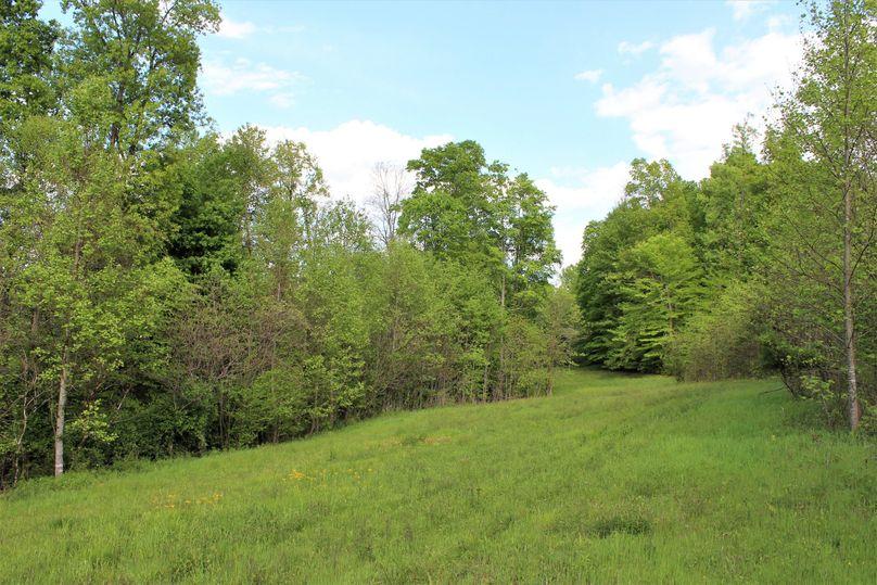 005 open field strip area near the north boundary