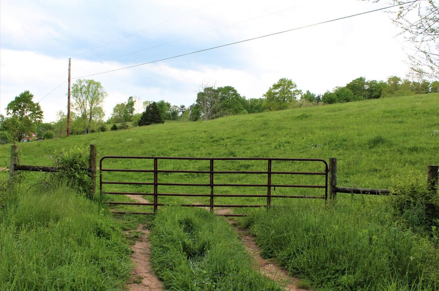 009 the gated entrance at the east area of the property