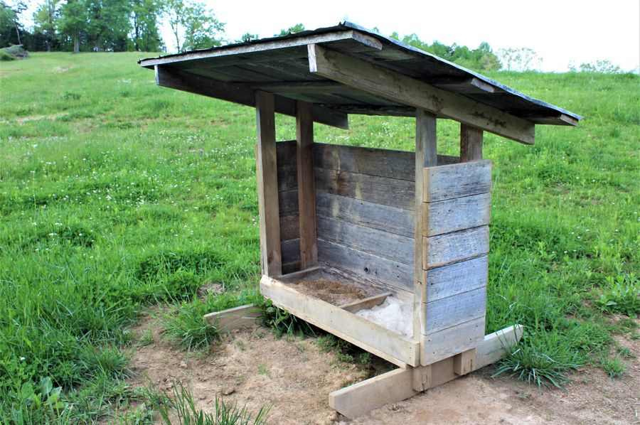 013 one of the main feeders and mineral stations in the pasture area