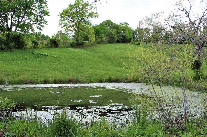 017 the small springfed farm pond providing water for the livestock
