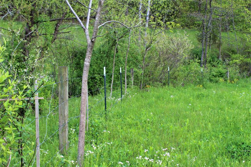 015 some of the fencing along the front edge of the property