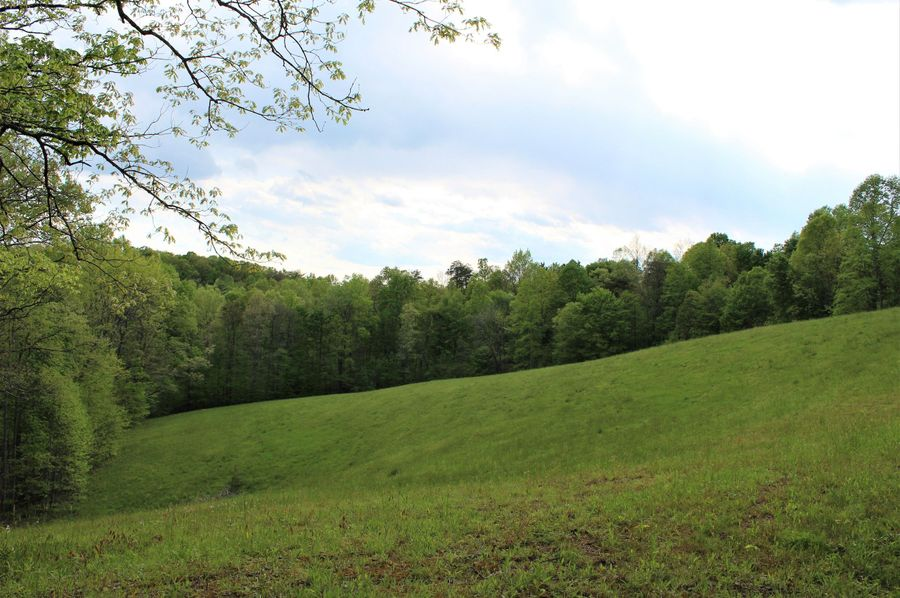 021 open field area in the middle of the property