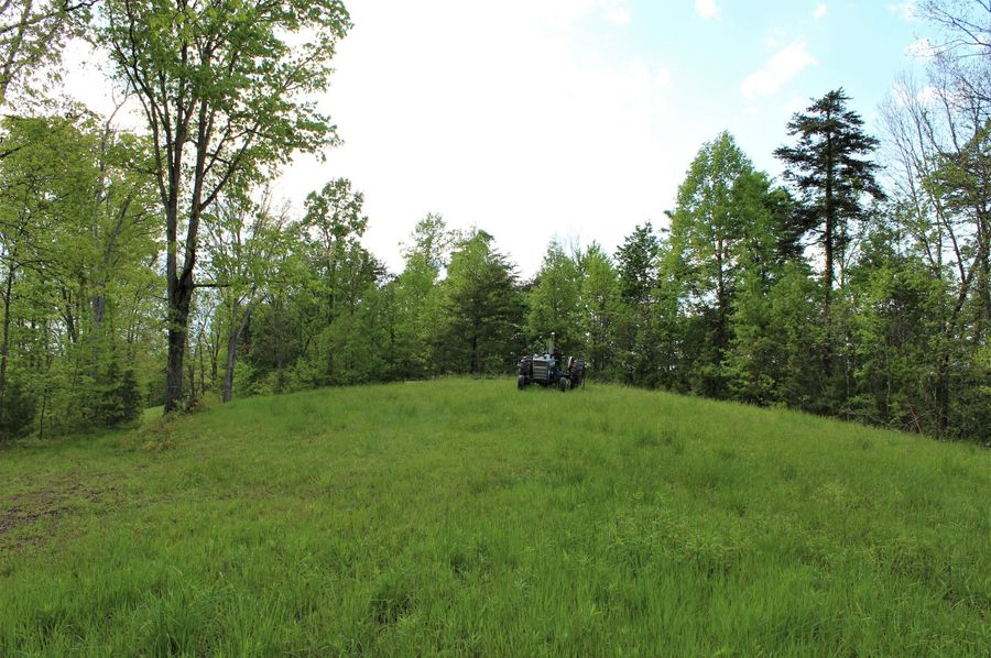 024 open field area on the top of the ridge