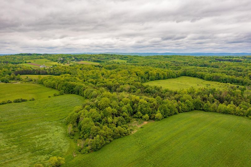 Collins farm land drone 8