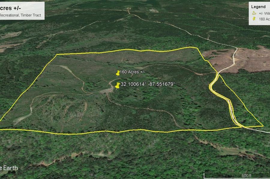 Aerial 5 approx. 160 acres wilcox county, al