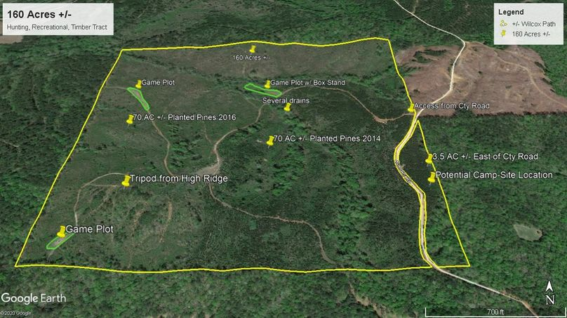 Aerial 6 approx. 160 acres wilcox county, al