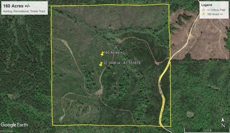 Aerial 1 approx. 160 acres wilcox county, al