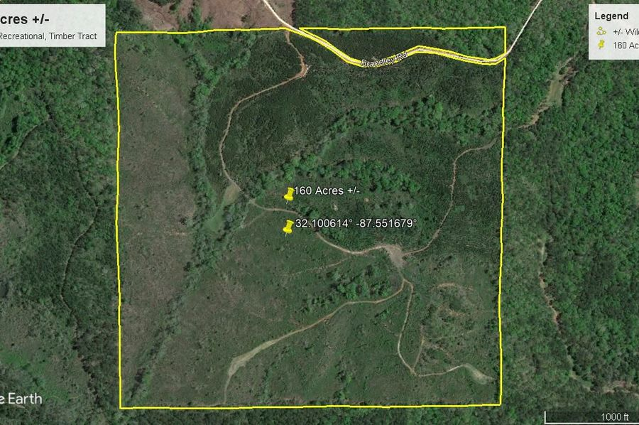 Aerial 2 approx. 160 acres wilcox county, al
