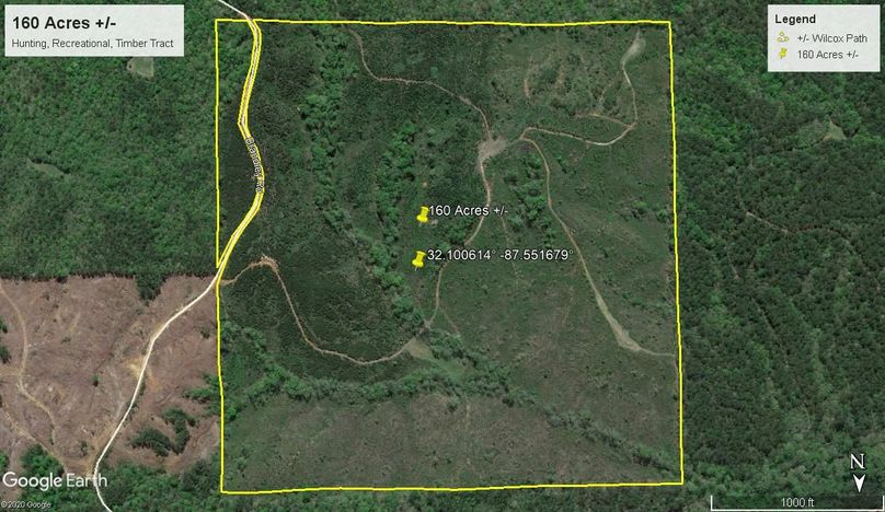 Aerial 3 approx. 160 acres wilcox county, al