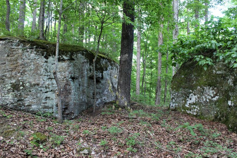 003 super cool rock features with easy access in the middle of the property