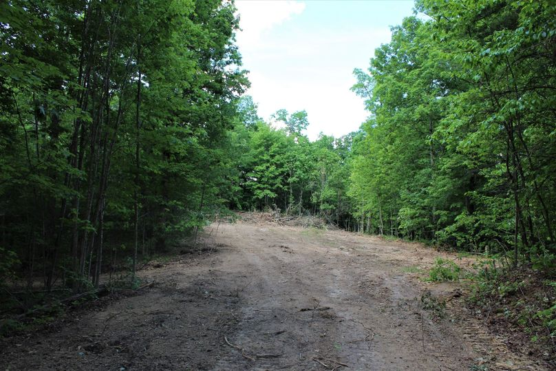 005 cleared opening in the middle of the property perfect for a cabin or even a small home overlooking the valley