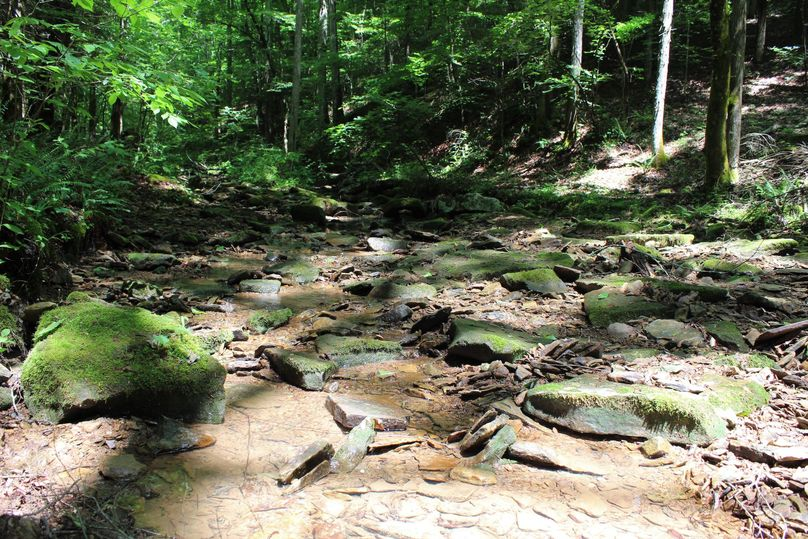 010 beautiful stream descending to the southeast