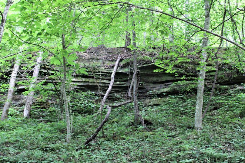 012 some rock ledges peeking through to the observant eye