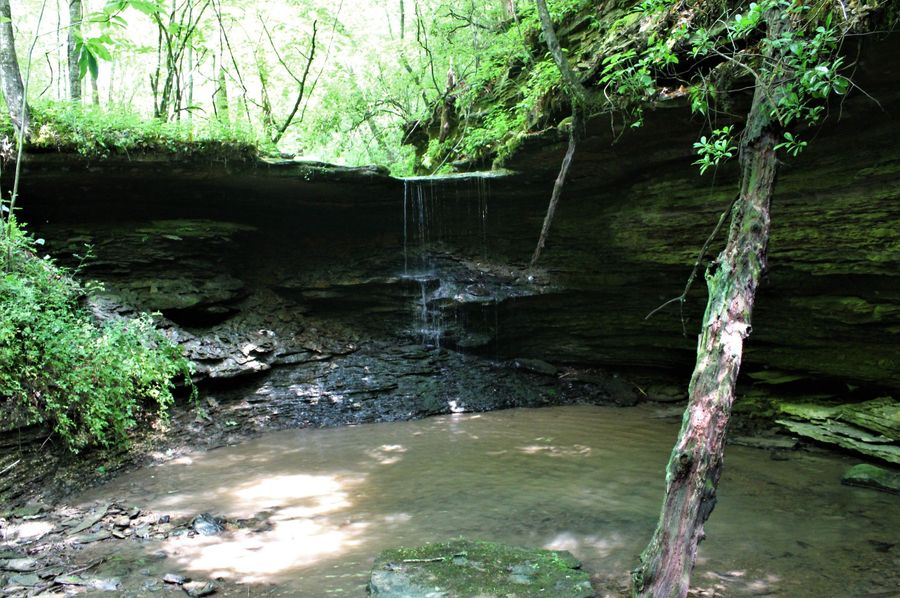 021 a nice water fall in the northern most corner of the property