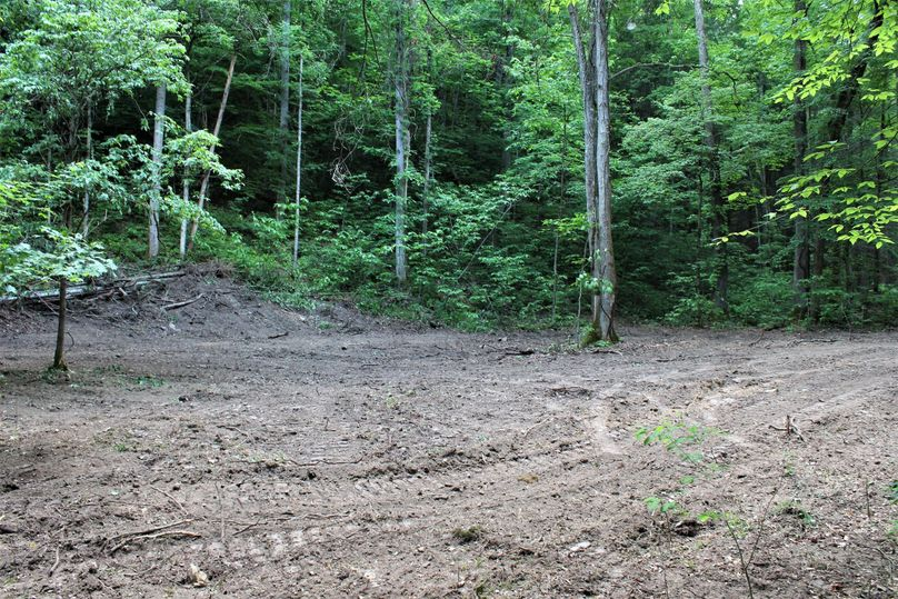 022 nice cleared out area down near the creek in the eastern portion of the property