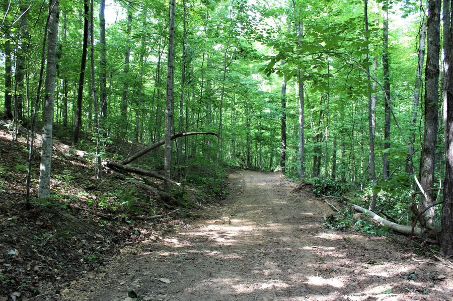 024 constructed access road in the western portion of the property