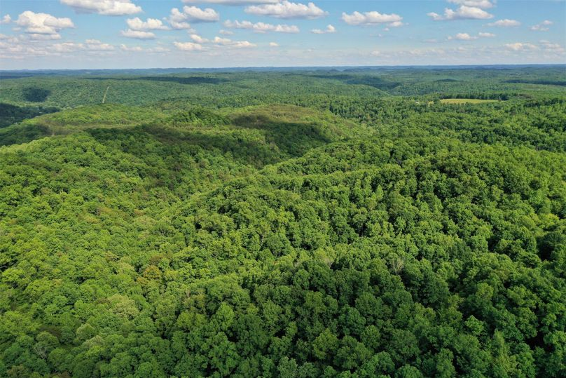 025 aerial drone shot from the west boundary looking to the east