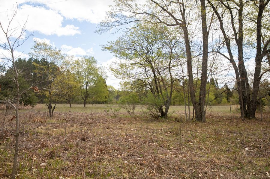 3 east 5 acres