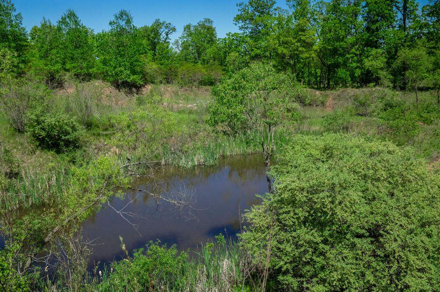 23 pond near entrance