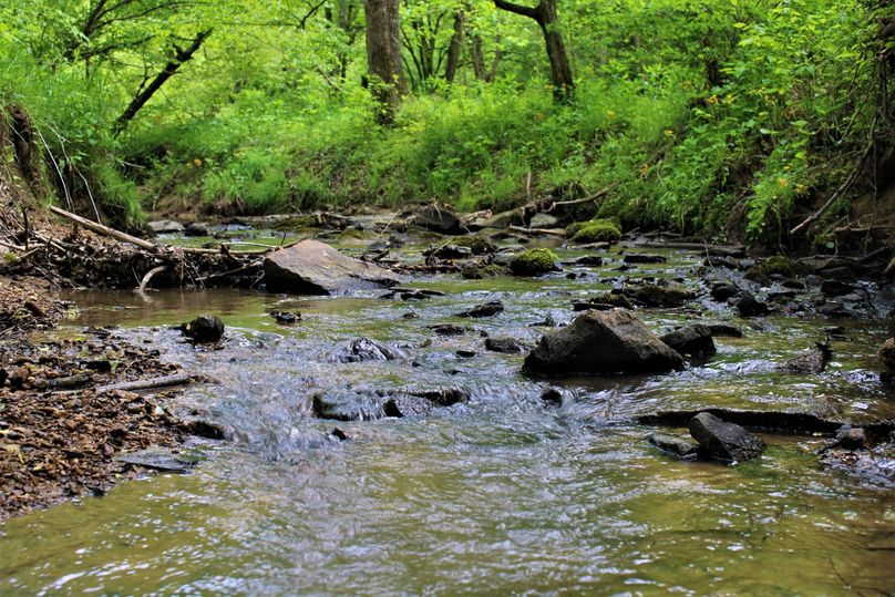 001 beautiful waters of roaring paunch creek