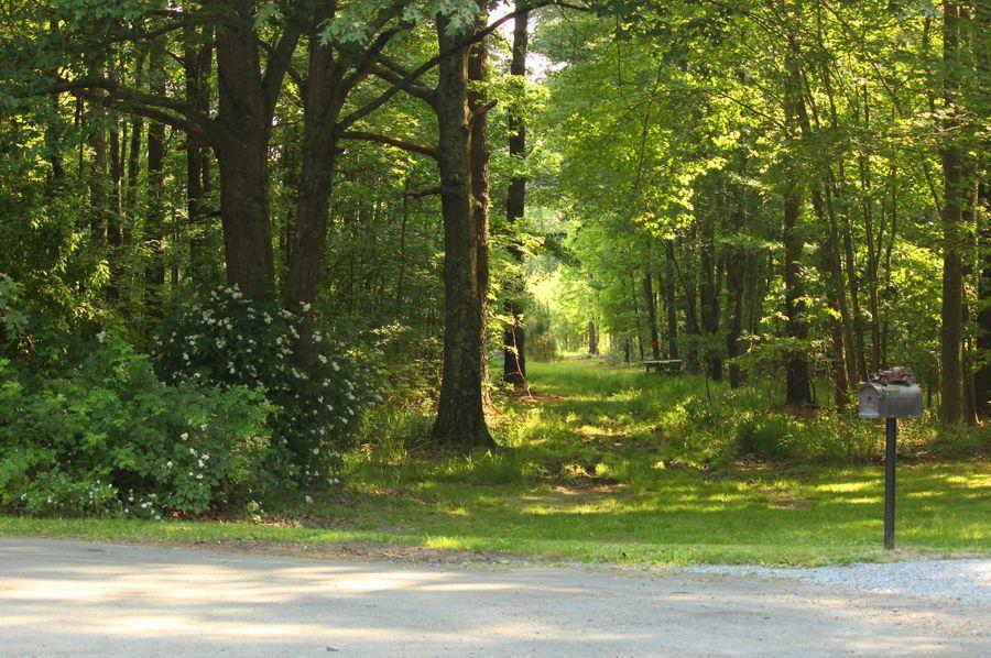 38.70ac queenanne  driveway
