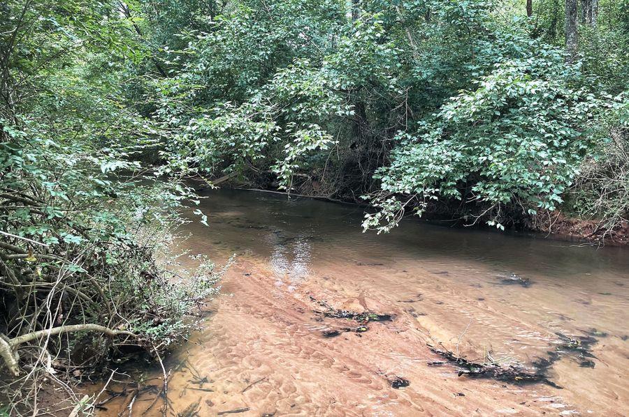 09 brushy creek 3