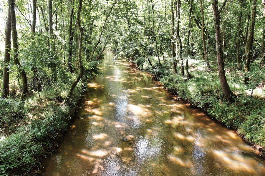 00 brushy creek