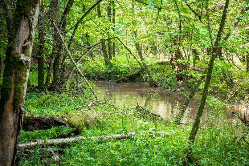 36 black creek runs along a portion of the west border