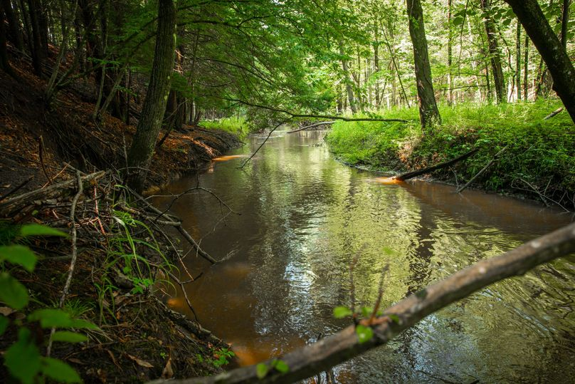 39 black creek