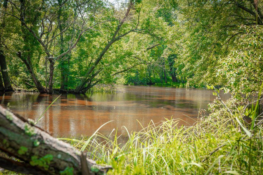46 world famous pere marquette river