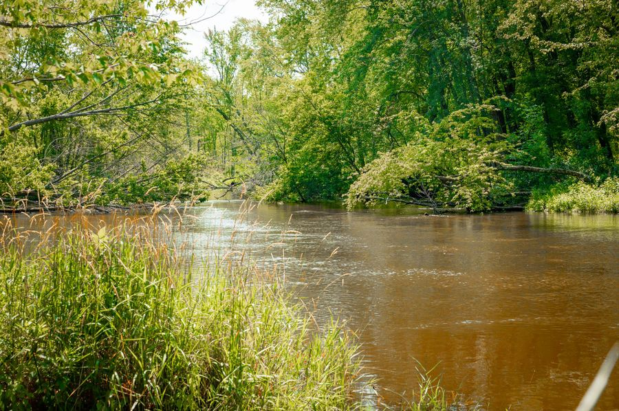 47 pere marquette river with world-class fishing