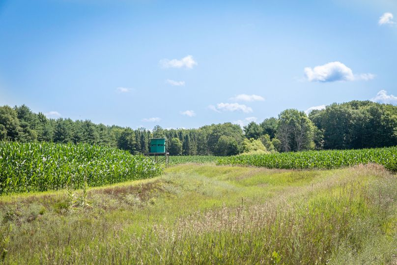 41 deer blind centrally located in a south ag field