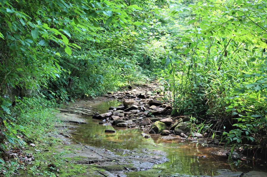 001 the beautiful blue-line stream flowing through the property