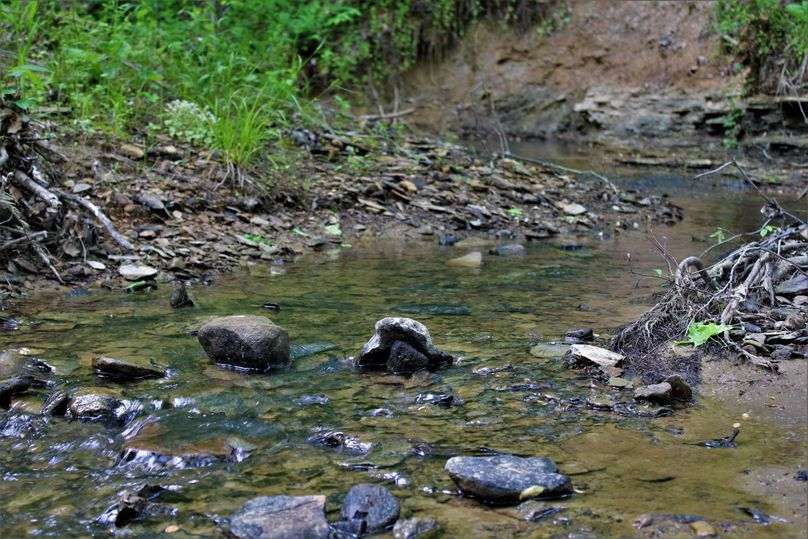 017 gushing waters of rich creek