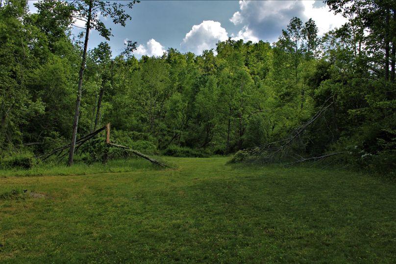 020 beautiful cleared area