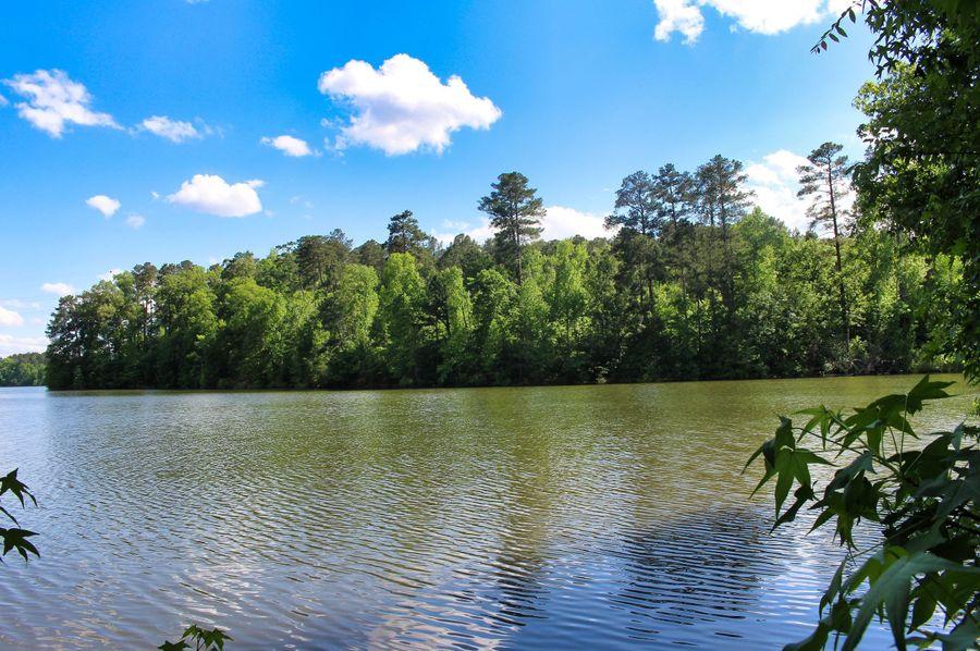 24 coe lake