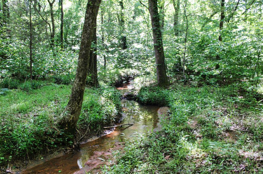 23 coe creek