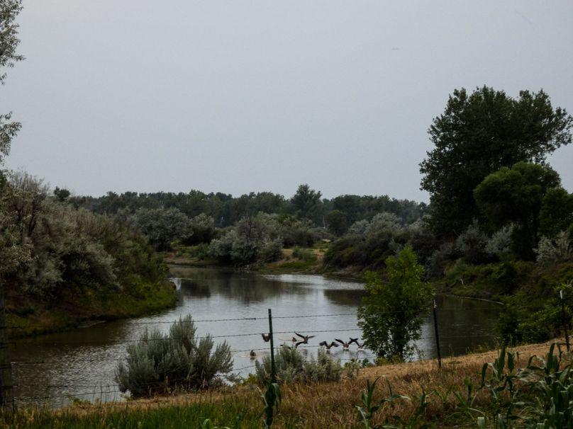 Riverbycorn