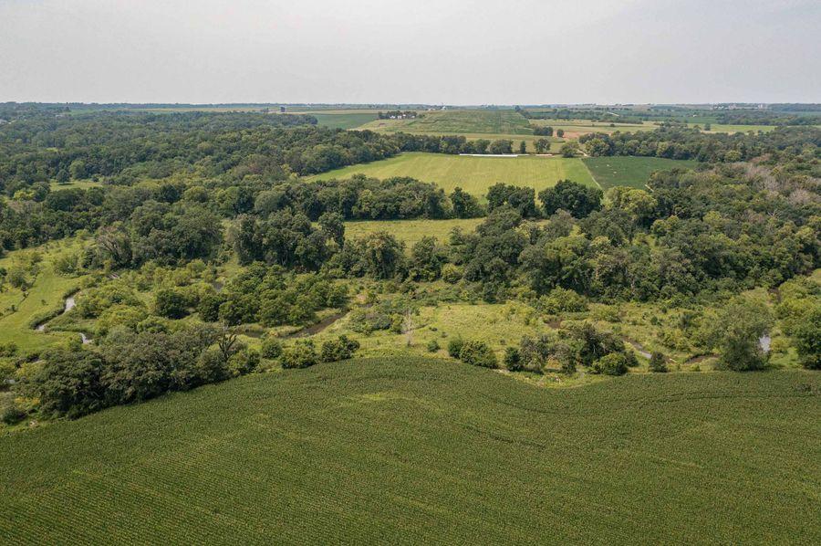 Bee tree farms 2mb (58 of 73)