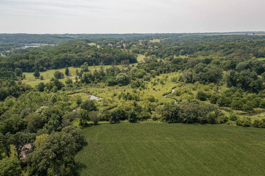 Bee tree farms 2mb (59 of 73)